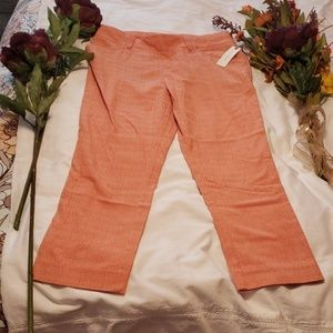 Anthropologie pants NWT